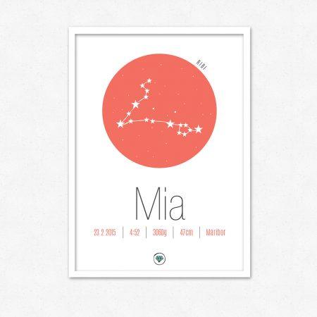 Personalizirana grafika ob rojstvu otroka | Horoskop znak RIBI | #superšik by Satis Design